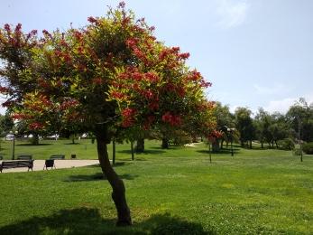 Parque de los Reyes